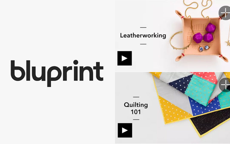 BluPrint Review: Is it Worth the Subscription Cost?
